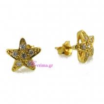 Χειροποίητα σκουλαρίκια (Αστέρι) από επιχρυσωμένο ασήμι 925ο με ημιπολύτιμες πέτρες (Ζιργκόν). IJ-020318
